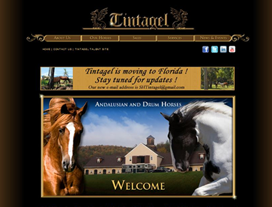 Exclusive Andalusian horse breeding, training & treatment farm. The site is comprised of 50+ pages with over 200 pictures, graphics, & over 20 video clips.